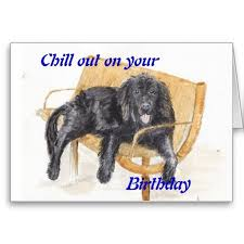 newfoundland birthday card newfoundland dogs birthday