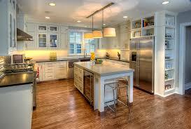 Samsung Cabinet Depth Refrigerator Samsung Counter Depth Refrigerator Kitchen Traditional With