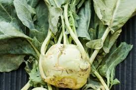 Green Root Vegetables - 5 tasty ways to prepare kohlrabi kitchn