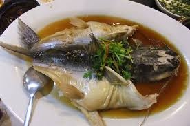 patin fish steamed with soy sauce restoran cuisine 古味坊