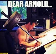 Arnold Schwarzenegger Memes - arnold schwarzenegger memes starecat com