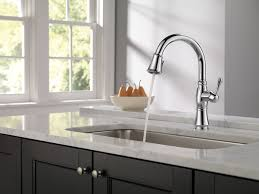Amazon Kitchen Faucet by Kitchen Faucets Amazon Design Ideas A1houston Com