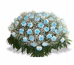 blue carnations nashville sympathy flowers by hody s florist sympathy flowers in