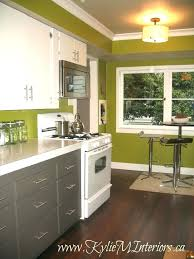 gorgeous kitchen color ideas with oak cabinets best colors top