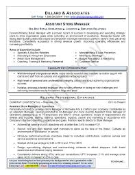 Resume Writer Nyc  professional resume writer  resume style
