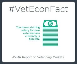 Starting Salary At Barnes And Noble Best 25 Veterinary Salary Ideas On Pinterest Veterinary