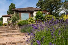 Flower Area - flowers that can help you sell your home
