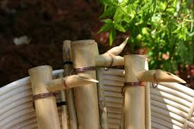 bamboo fountain kit outdoor fountains pinterest bamboo