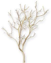 Manzanita Centerpieces Gold Metallic Manzanita Branches 18