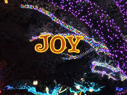 Stoneham Zoo Lights by 100 What Is Zoo Lights Zoolights Hashtag On Twitter About