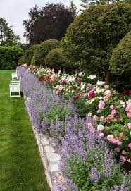 lovely rose garden ideas on decorating home with pictures