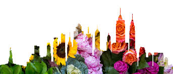 Flower Delivery Nyc New York Same Day Flowers Bloomthat