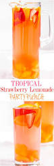 best 25 party drinks alcohol ideas on pinterest fun summer