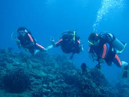 padi scuba diving courses patong andaman divers diving tours