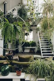 Bedroom Plants Inside Clapton Tram A Plant Filled Warehouse Space Jungle