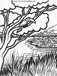 jungle coloring pages free description of jungle trees coloring