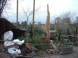 amur leopard enclosure construction at colchester 29 11 09 zoochat