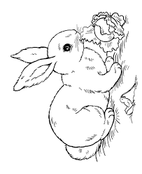 bunny rabbit coloring pages easter rabbit coloring 9564