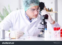 Lab Chemist Young Scientist Working Lab Stock Photo 572978845 Shutterstock