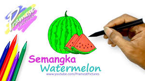 how to draw a watermelon fruit coloring pages youtube