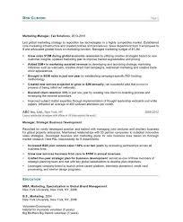 Subject Matter Expert Resume Samples by Marketing Director Free Resume Samples Blue Sky Resumes