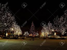 photo of light trees with lights in the park around