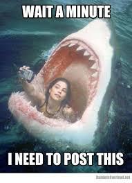 Meme Selfie - funny memes about girls girl meme facebook selfie fail funny