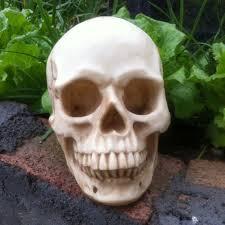 online get cheap skull prop aliexpress com alibaba group