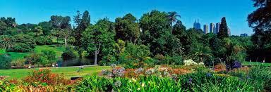 The Royal Botanic Gardens Royal Botanic Gardens Melbourne Halaltrip