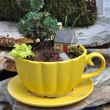 micro cottage grandma u0027s cobblestone micro cottage gardens cottages and cups