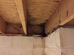 basement water leaks can come from above u2013 home repair advice