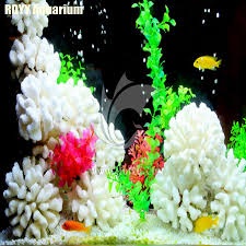 various shapes white coral rock beautiful aquarium