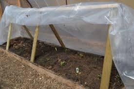 greenhouse alberta home gardening