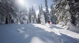 world s best ski destinations ski vacation tips four seasons