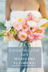 wedding flowers in bulk the diy s 1 resource for wholesale wedding flowers buy