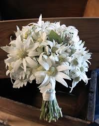 wedding flowers sydney a wedding of australian flowers butterfly philosophy
