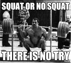 Squat Meme - book yourself into squat rehab group therapy is now in session