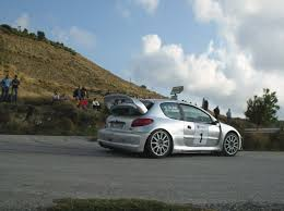 peugeot 206 rally peugeot 206 maxi dx custom model tuner shop diecastxchange com