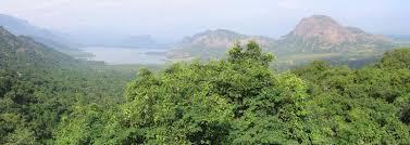 eastern and western ghats palani hills wikipedia