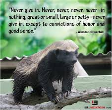 Honey Badger Meme - 15 incredible pictures of honey badger slayer of memes find your