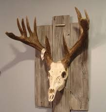 Diy Antler Chandelier 20 Awesome Pieces Of Antler Art