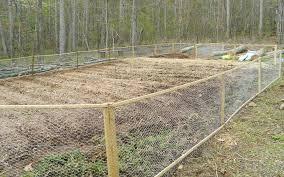 garden fence ideas chicken wire chicken wire fence gate large