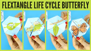 butterfly life cycle paper toy template flextangle printable