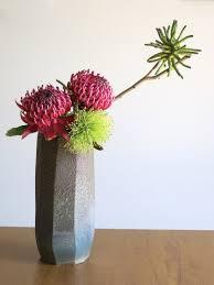 native plants christchurch roadside ikebana australian native plants