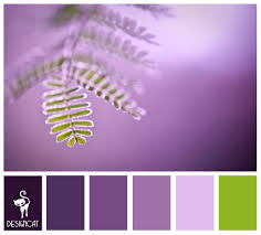 purple u0026 green fern purple lilac pastel green colour