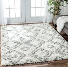 Modern Shag Rug 126 Best Area Rugs Images On Pinterest Area Rugs Rugs And