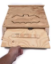 BCM Double Chamber Bat House DIY Kit – Bat Conservation and