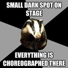 Honey Badger Memes - 13 backstage badger memes that all theatre lovers know too well