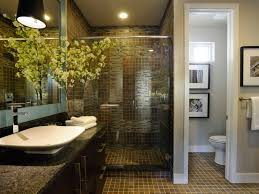 Ada Bathroom Design Ideas Home Design - Handicapped bathroom designs