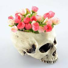 skull flower pots daily stuff